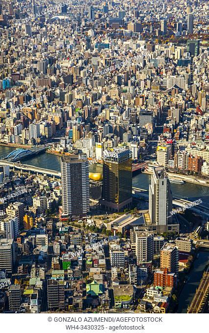 View of Tokyo from Tokyo Sky Tree. Sumida river. Sumida Neighborhood. Tokyo. Japan