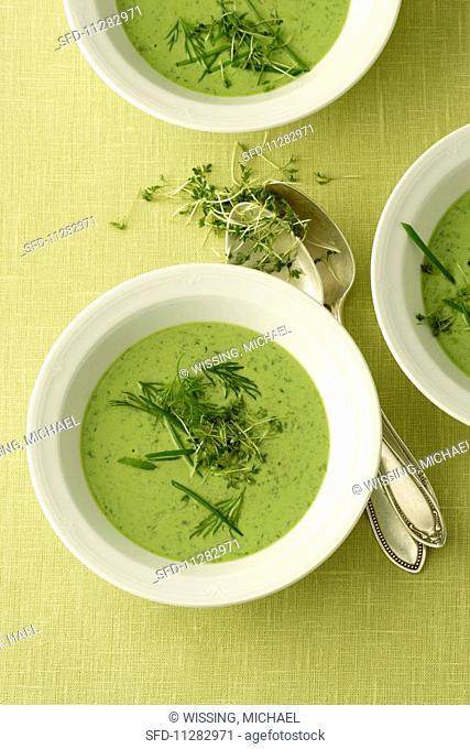 Frankfurt soup with herbs and smoked salmon