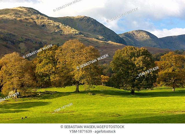 Autumn landscape in the Lake District National Park, Cumbria, England, UK, Europe