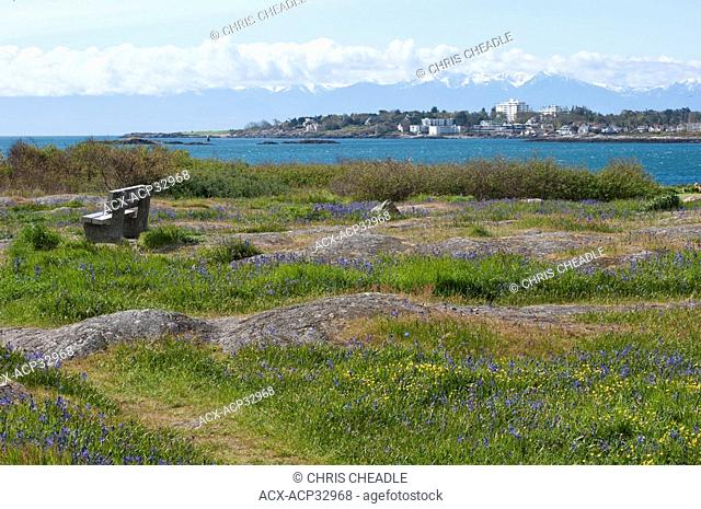 Cattle Point, Uplands, with Oak Bay in background, Victoria, British Columbia, Canada