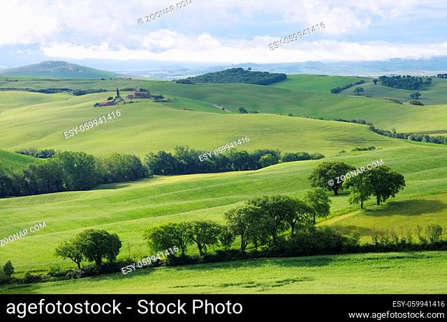 Toskana Huegel - Tuscany hills 60