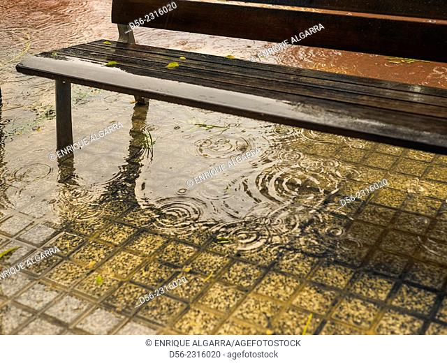 bench in a rainy day, Valencia, Spain