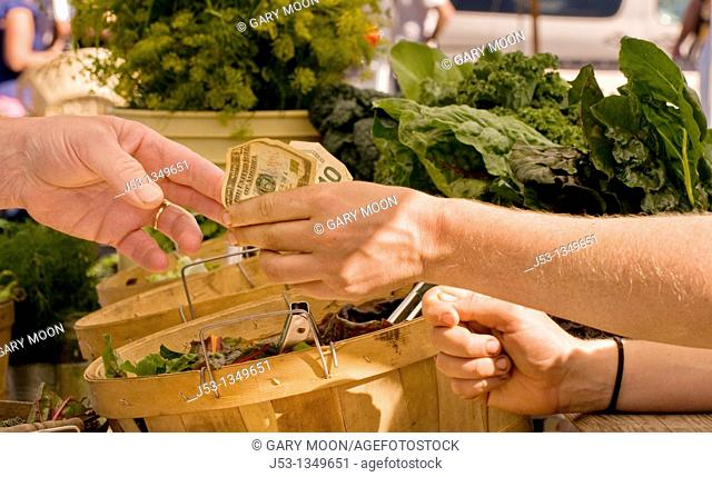 Paying for produce at farmers' market, downtown Arcata, California