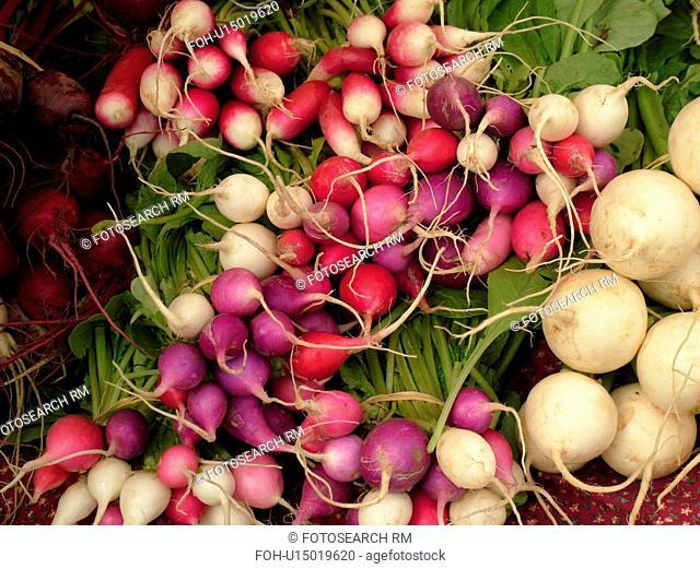 Montpelier, VT, Vermont, Farmer's Market, radishes, turnips
