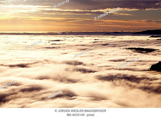 View from Feldberg over the Rhine Valley to the Vosges, inversion weather, Black Forest, Baden-Württemberg, Germany