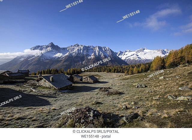 Alpine huts in Entova Alp lighted by the autumn sun Malenco Valley Sondrio province Valtellina Lombardy Italy Europe