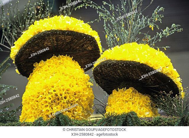 flower arrangement during the ''Fete des Jonquilles'' Daffodil's festival, Gerardmer, Vosges department, Lorraine region, France, Europe