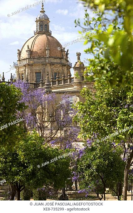 Cathedral, Jerez de la Frontera. Cadiz province, Andalucia, Spain