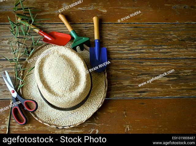 Set of garden tools on wooden table