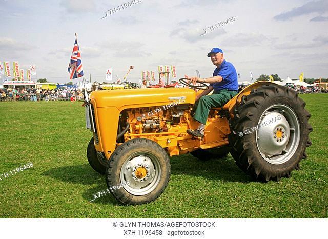 Massey Ferguson 35 vintage tractor