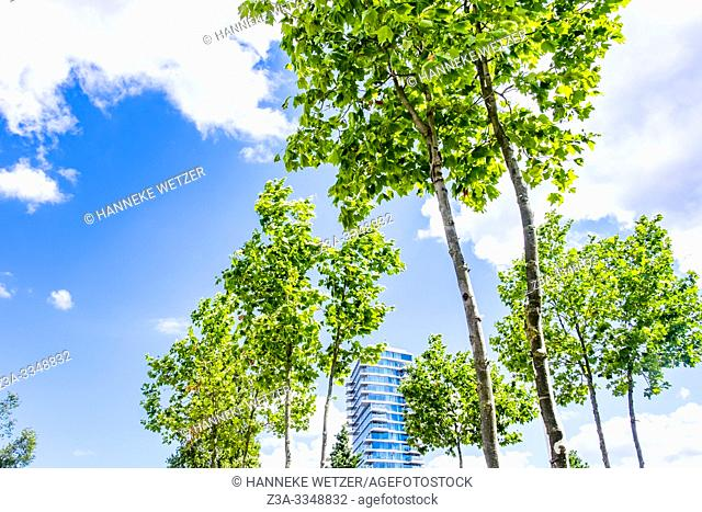 High-rise building behind green trees in Eindhoven, The Netherlands, Europe