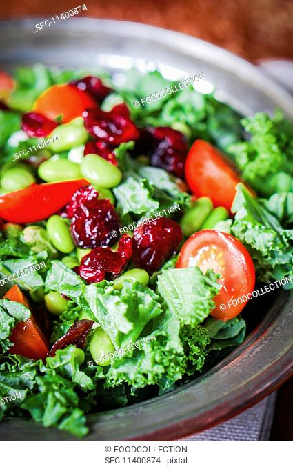 Mixed leaf salad with tomatoes, soya beans and dried cranberries