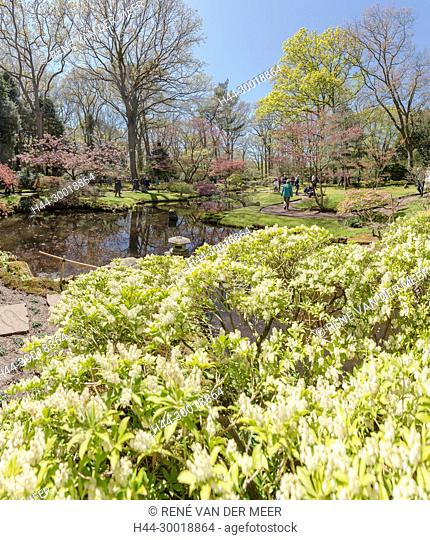 The Japanese garden at the Clingendael park, Den Haag, Zuid-Holland, Netherlands