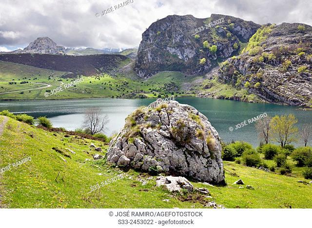 Enol lake in the Picos de Europa. Asturias. Spain