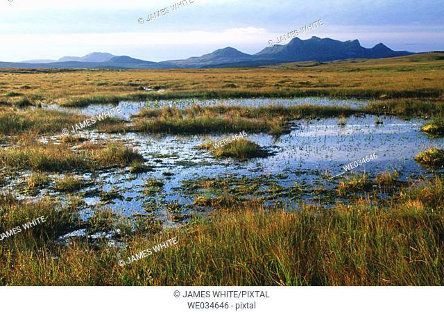 Near Von Tongue by Lairg, Ben Loyal 765m. Sutherland, Northern Highlands. Scotland. UK