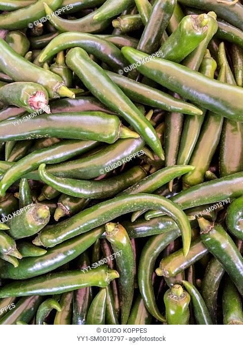 Tilburg, Netherlands. Colorful green peppers in a offered in a market stall a greengrocer at the local Wednesday market