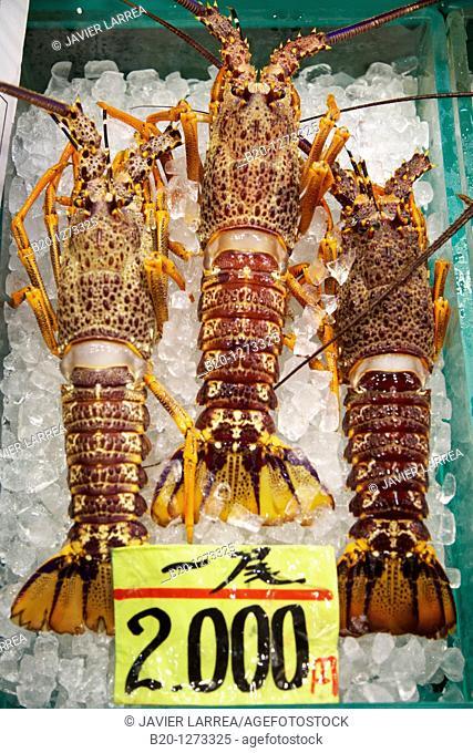 Lobster, Tsukiji fish market, Tokyo, Japan