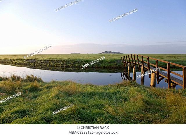Bridge to the Hanswarft and Ockenswarft on the Hallig Hooge, Schleswig-Holstein, North Germany, Germany