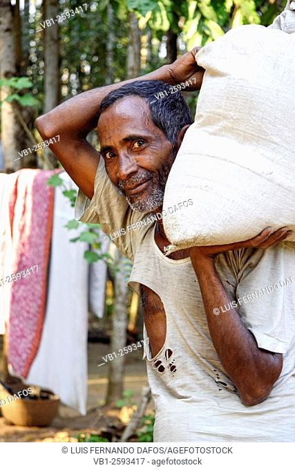 Bangladeshi working man with broken t-shirt carrying a heavy sack on his shoulder. Jaintiapur, Sylhet Division, Bangladesh