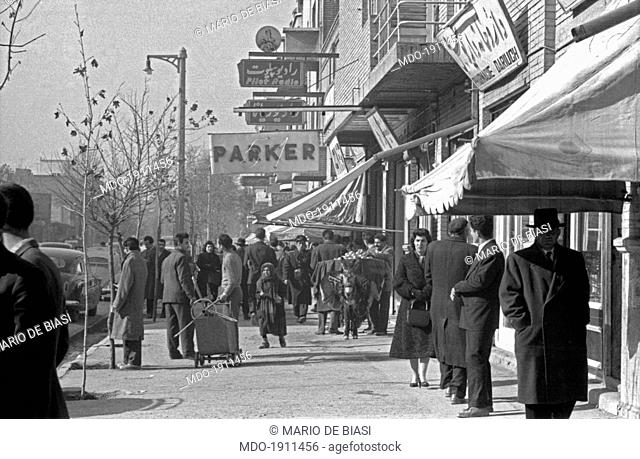 Some passers-by walking in a commercial street of the city. Tehran, 1956