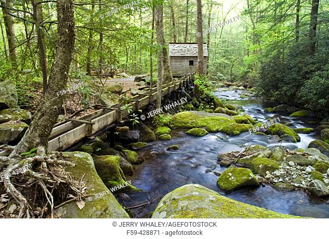 Reagan Tub Mill on Roaring Fork, Great Smoky Mtns National Park, TN