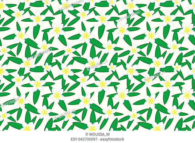 Floral seamless pattern. Hawaiian plumeria flower and leaves seamless pattern. Floral print. White background. Print for textile or web