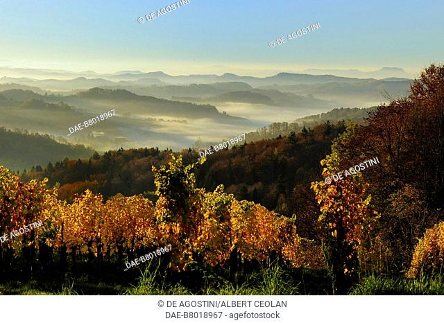 View of the hills toward the Slovenian border, Southern Styria Wine Road, Austria