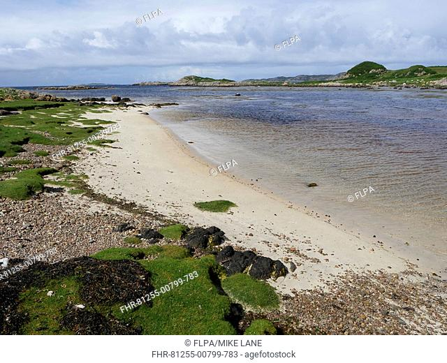 View of sandy beach, Fidden, Ross of Mull, Isle of Mull, Inner Hebrides, Scotland, July