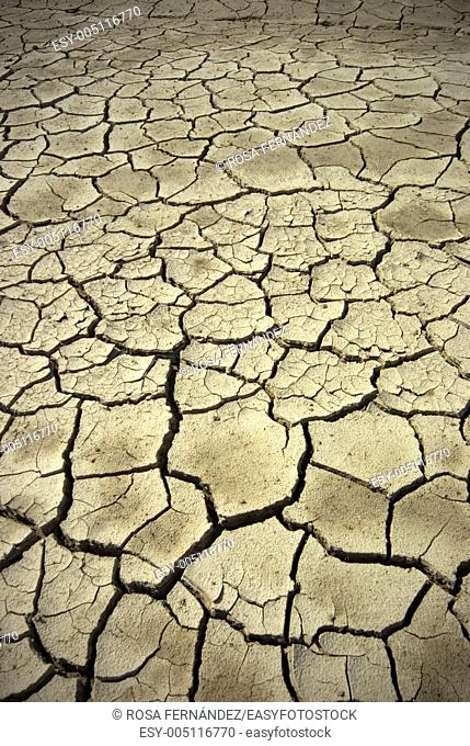 Dry and cracked mud river bank after a severe drought