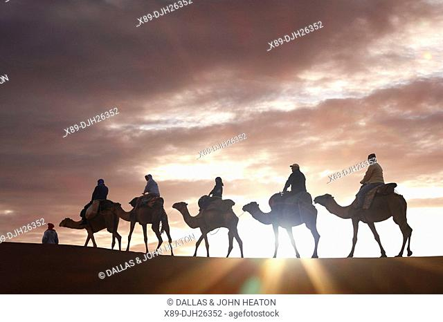 Africa, North Africa, Morocco, Sahara Desert, Merzouga, Erg Chebbi, Tourists Riding Camels at Sunrise