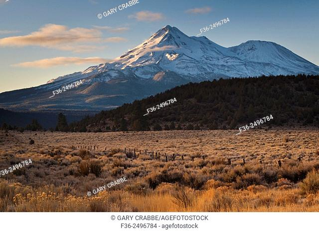 Mount Shast and high meadow in Siskiyou County, California