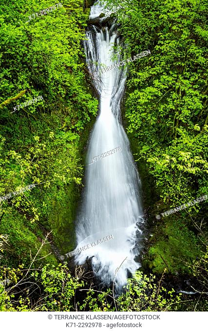 The Shepherd Dell Falls in the Columbia River Gorge, Oregon, USA