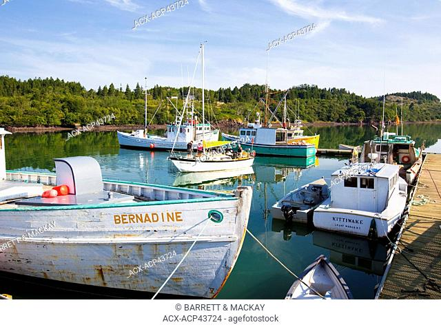 Fishing boats tied up at wharf, Black's Harbour, Bay of Fundy, New Brunswick, Canada