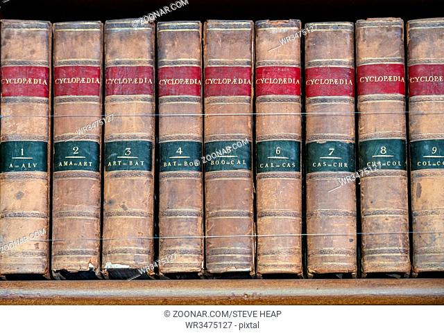 Row of old leather bound encyclopaedia books on a wooden shelf
