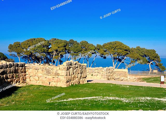 Spring in the Greek city of Empuries, Costa Brava, Girona province, Catalonia, Spain
