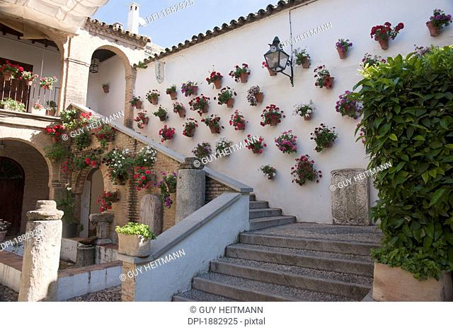 Wall Of Potted Plants At Cathedral Of Our Lady Of The Assumption, Cordoba, Spain
