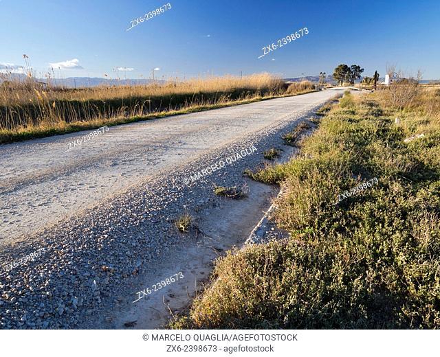 The long and straight road. Encanyissada Lagoon surroundings. Ebro River Delta Natural Park, Tarragona province, Catalonia, Spain