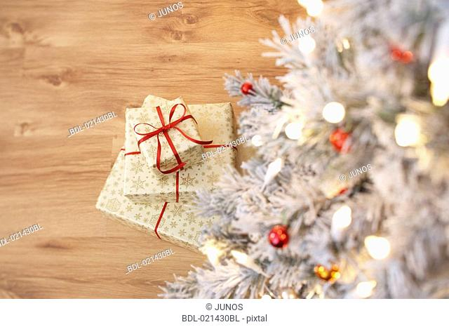 still life of presents under the christmas tree