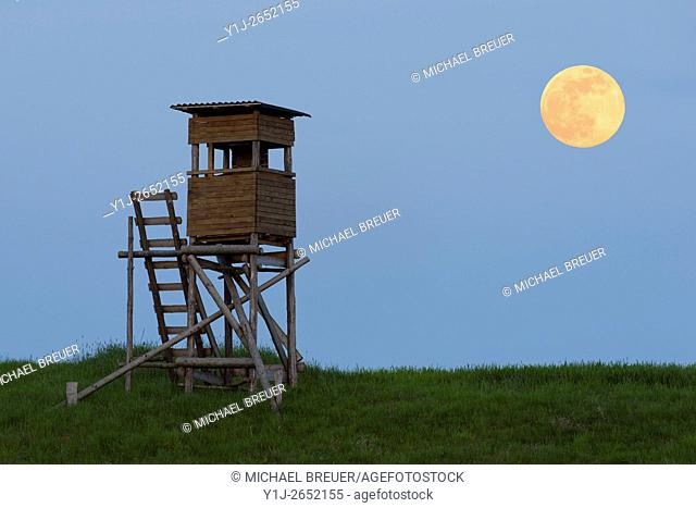 Hunting Blind at Full Moon, Odenwald, Hesse, Germany, Europe