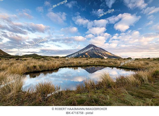 Stratovolcano Mount Taranaki or Mount Egmont reflected in Pouakai Tarn, Mount Egmont National Park, Taranaki, North Island, New Zealand