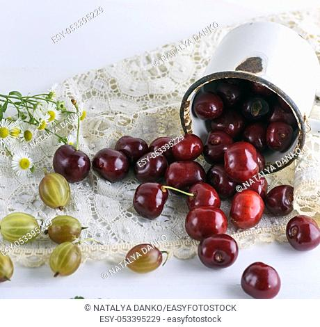 scattered ripe red berries cherries from a white iron mug on a table