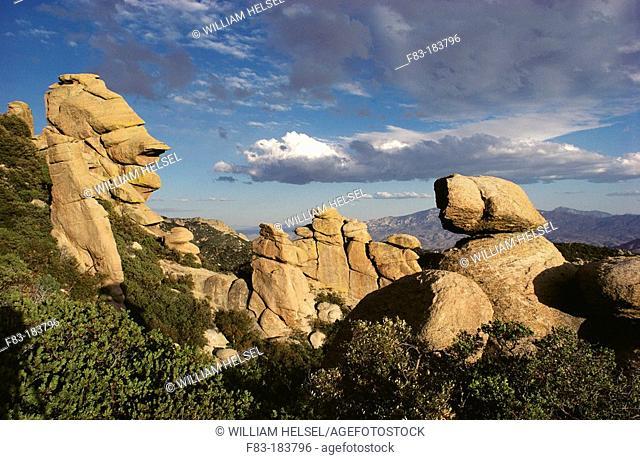 Rock formations on Mount Lemmon. Coronado National Forest. Arizona. USA