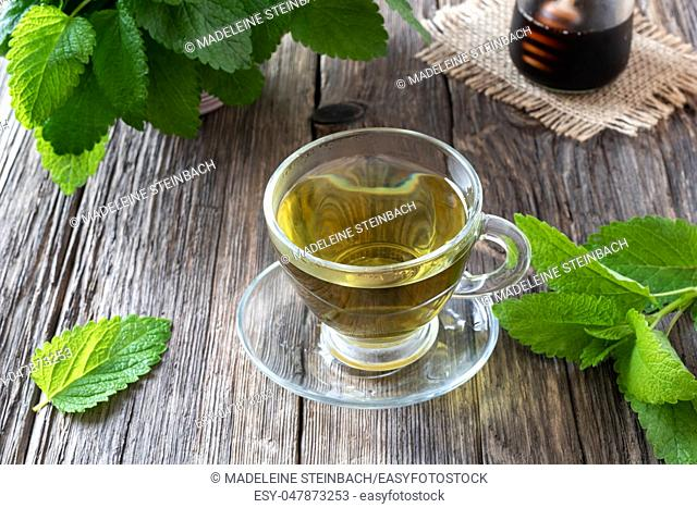 A cup of herbal tea with fresh melissa twigs