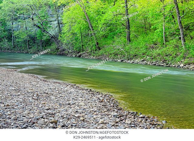 Spring foliage reflected in the Buffalo River at Pruitt Landing, Buffalo National River, Arkansas, USA