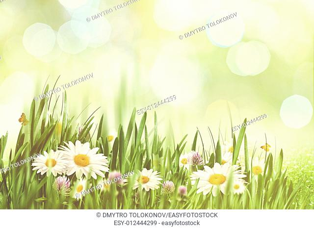Summer afternoon with faded colors, abstract natural backgrounds