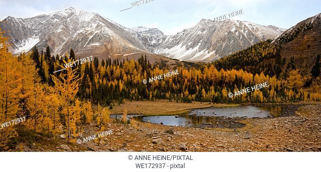Mountain landscape. Alberta. Canada