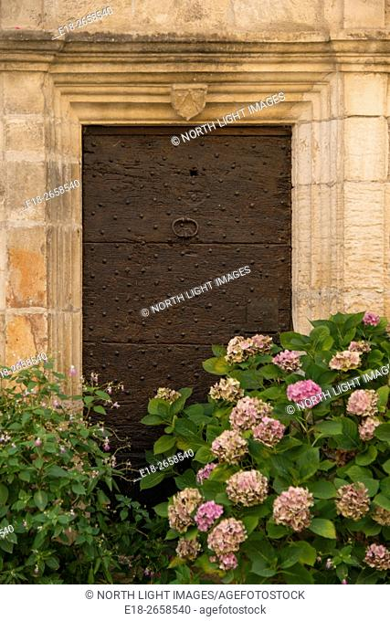 France, Midi-Pyrénées, Carrenac. Flowering hydrangea outside solidly closed door of a home in this quaint Dordogne Valley village