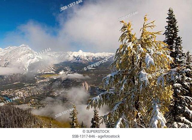 Aerial view of a town, Sulphur Mountain, Banff, Banff National Park, Alberta, Canada