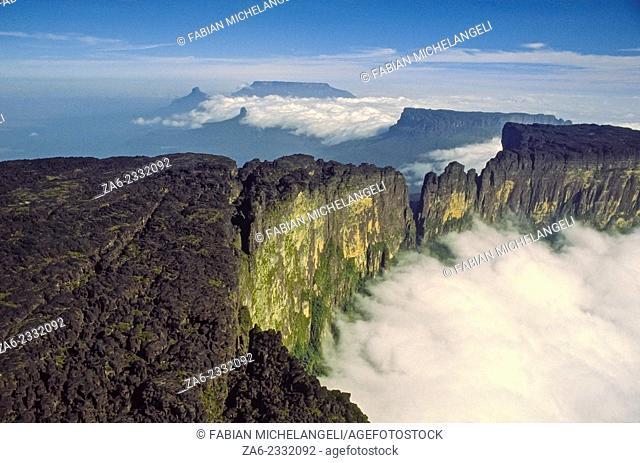 Summit of Cukenan-tepuy in the Gran Sabana, Canaima National Park, Bolivar state. Venezuela