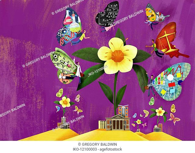 University flower attracting different career choice graduate butterflies